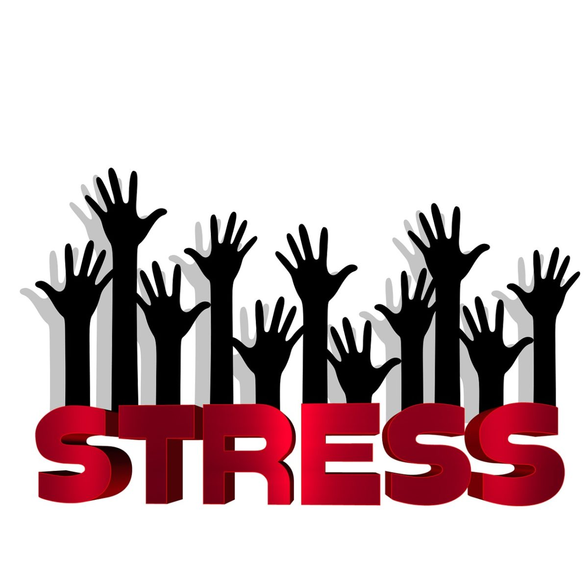 Did You Know This Are the 5 Best Ways to Reduce the Stress for Your Employees?
